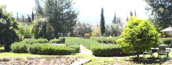 jardin-bio-aromatique-ourika
