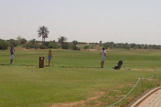 palmeraie-joueur-golf